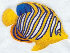 Angelfish design (F9092) from www.Emblibrary.com