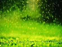 Awesome wallpaper of Wallpaper Rain In The Grass Weather, resolution 1600 x 1200, type Weather Clouds Tornado Rain Cyclone Flashlights Awesome, for Desktop of your PC. Beautiful wallpaper free for you!