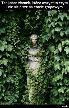 Statues Of Unity - Statues Garden Outdoor - - - - Original Tattoos, Design Page, Tee Design, Greek Garden, Greek Statues, Angel Statues, Plant Aesthetic, Face Aesthetic, Nature Aesthetic