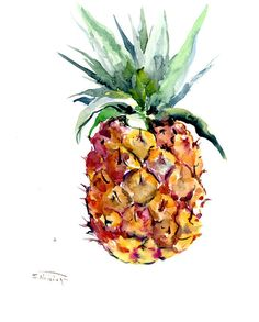 Pineapple, tropical fruits, original one of a kind watercolor art 11 X 13 in, pineapple painting, pineapple lover, kitchenfruits, Hawaii