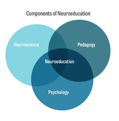 Cognitive neuroscience will shape the future of corporate learning practices. CORPORATE LEARNING PRACTICES HR neuroeducation