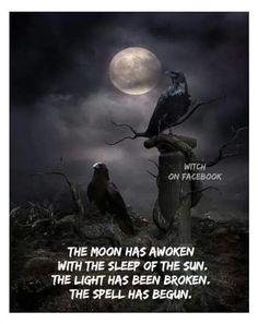 Love this Photo Montage.Dark, Mysterious and Dangerously Beautiful! Quoth the raven. Crow Art, Raven Art, Dark Fantasy, Fantasy Art, Corvo Tattoo, Quoth The Raven, Image Blog, Crows Ravens, Gothic Art