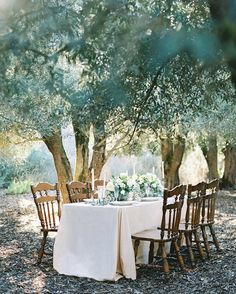 simple outdoor table under the trees