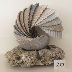 Cockle Shell Sculpture on Sea Stone Base  by WhitemarshShellArt                                                                                                                                                                                 More Sea Crafts, Nature Crafts, Home Crafts, Diy And Crafts, Baby Crafts, Seashell Projects, Driftwood Crafts, Seashell Art, Seashell Crafts