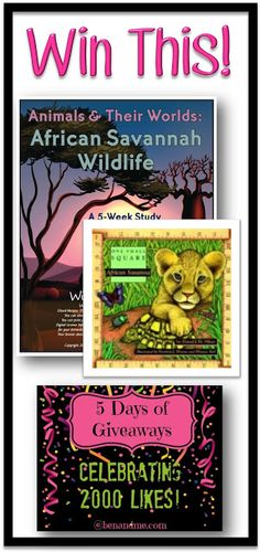 5 Days of Giveaways -- Winter Promise African Savannah Wildlife - Ben and Me