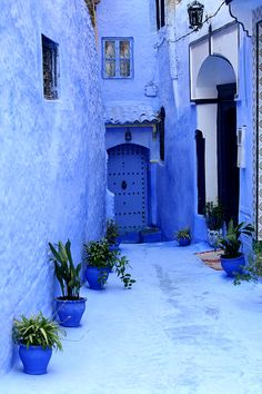 Discover the 'blue pearl' of the Rif Mountains on a full-day tour from #Tangier to #Chefchaouen, and explore the vivid lanes of a remarkable city!
