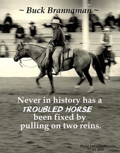 So true!Never in the history of anxious horses has anxiety been relieved by pulling on two reins.
