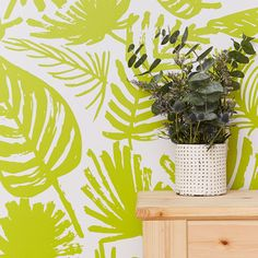 Currently inspired by: Palms Removable Wallpaper on Fab.com