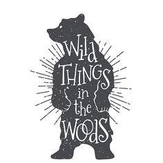 Bear,wild,