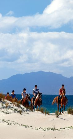 Auckland, New Zealand - horse riding on the beach