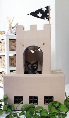 La Gata Sobre el Tejado de cartón: la inspiración para el bricolaje cartón casas del gato | Apartment Therapy