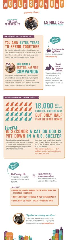World Spay Day celebrates twenty years of promoting spay/neuter and reducing pet homelessness and euthanasia