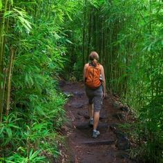 Overview     Hotels     Restaurants     Things to do     Tips and Articles  Best Hikes on Maui Best Hikes on Maui