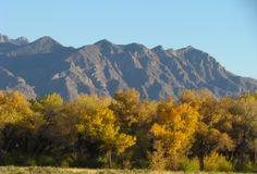 the beautiful Rio Grand New Mexico