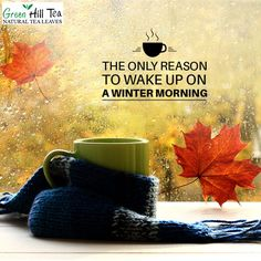 A perfect winter morning starts with a cup of tea. So, Get yours and give a healthy start to your day.  visit: http://www.greenhilltea.com/ #Tea #Healthy