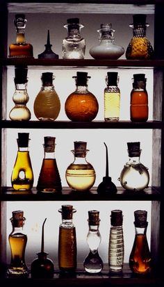 themagicfarawayttree:  potions
