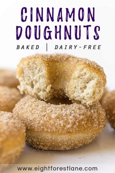 Baked Cinnamon Sugar Doughnuts - Eight Forest Lane - These classic dairy-free baked cinnamon sugar doughnuts are so easy to make at home. They come toge - Dairy Free Donuts, Sugar Free Donuts, Dairy Free Baking, Cinnamon Sugar Donuts, Dairy Free Recipes, Gluten Free Dairy Free Donut Recipe, Dairy Free Desserts, Dairy Free Snacks, Easy Recipes