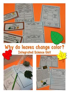 Fall Activities Why do Leaves Change Colors, Experiments, Interactive Notebook Cool Science Experiments, Easy Science, Science Ideas, Science Lessons, Back To School Teacher, School Fun, School Ideas, Project Based Learning, Student Learning