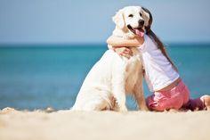 Al contrario di quel che si direbbe, creare un vincolo con il proprio cane non è poi così facile. Serve molta pazienza e tanto amore