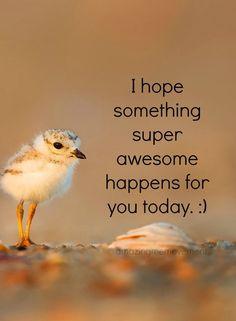 #lifelessons #inspirationalquote #motivationalquotes #positivethinking #dailypositive #amazingmemovement #wordsofencouragement #karma #gratitude #selfrespect #selfconfidence #positivequotes #inspirationalquote #motivationalquote #amazingmemovement