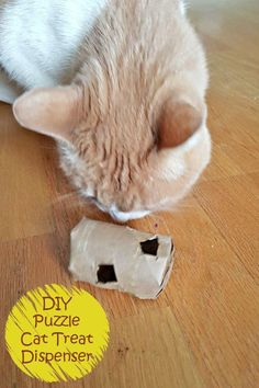 DIY Cat Treat Dispenser: This easy tutoprial will keep your pets happy as you upcycle a cardboard tube to create a puzzle for them to solve to earn their treats. It's a cat toy with a dual benefit of keeping them active in mind and body #IAMSCat AD