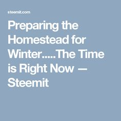 Preparing the Homestead for Winter.....The Time is Right Now — Steemit
