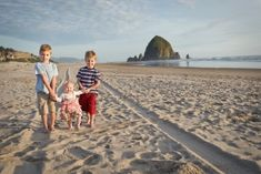 Kim Blau Photography is located in Vancouver, Washington and specializes in on-location portraiture. Vancouver Washington, Newborns, Beautiful World, Family Photography, Monument Valley, Editorial, Photographs, Engagement, Couple Photos