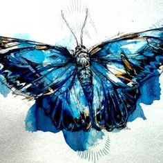 Mighty Morpho Butterfly - Art Print by Abby Diamond Butterfly Painting, Butterfly Watercolor, Watercolor And Ink, Butterfly Artwork, Watercolor Ideas, Watercolor Tattoo, Morpho Butterfly, Blue Morpho, Blue Butterfly