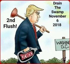 Political Quotes, Political Cartoons, Political Views, Cartoon Memes, Funny Cartoons, Washing Dc, Conservative Memes, Trump Quotes, Trump Is My President