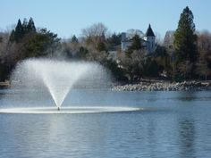 Reno's Virginia Lake: many birds, two fountains, rarely boats, no swimming