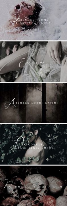 The Raven Cycle + Latin Quotes 1/?
