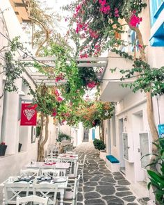 A fairy-tale alley .... Naoussa village at📍Paros island (Πάρος)