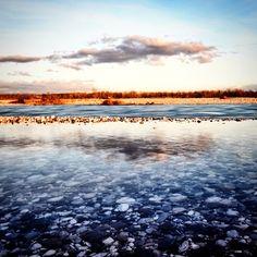 #ShareIG #spilimbergo #sunset #reflection #mirror #nature #landscape #travel #nikon #tagliamento #river #colours #italy #water #nofilter #tps1million #ngconassignment
