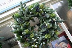 Miss Pickering: Blue Spruce Christmas wreaths - a retrospective