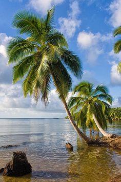 Tropical landscape from Sainte Marie Island, Madagascar Most Beautiful Beaches, Beautiful World, Beautiful Places, Amazing Places, Madagascar Travel, Madagascar Honeymoon, Mauritius, Tropical Landscaping, Landscaping Design