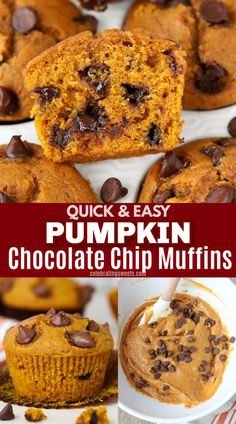 Soft and moist pumpkin muffins loaded with chocolate chips. An easy fall breakfast or snack. Healthy Pumpkin Bread, Easy Pumpkin Pie, Pumpkin Pie Bars, Pumpkin Recipes, Holiday Desserts, Fun Desserts, Recipe Using Pumpkin, Best Dessert Recipes, Breakfast Recipes