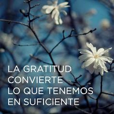 Gratitud                                                                                                                                                     Más