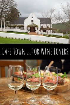 The Best of Cape Town for Wine Lovers