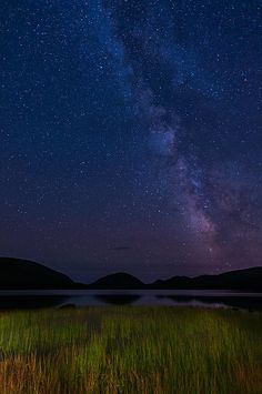Lake Grasses on Starry Night Art Print by Michael Blanchette Starry Night Wallpaper, Camping In Illinois, Best Landscape Photography, Night Photography, Beaches Near Me, Camping In North Carolina, Camping Places, Camping Cabins, Camping Gear