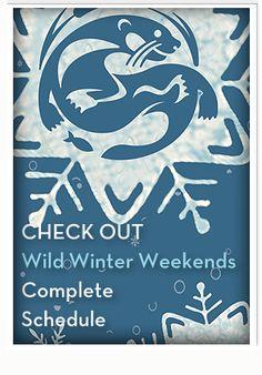 Wild Center Wild Winter Weekends