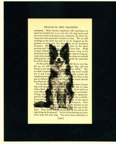 Border Collie Printed on Upcycled Dog Book Page by elizaBcrafts