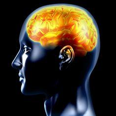 Les neurosciences au service de lentreprise