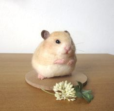 Hamster & four leaf clover ★ wool felt Needle Felted Animals, Felt Animals, Needle Felting, Cute Animals, Unusual Animals, Unusual Pets, I Dont Have Friends, Felt Mouse, Shabby Chic Crafts