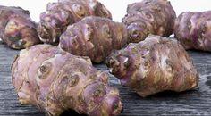 Come mangiare il Topinambur? Qui idee e ricette per sperimentare