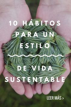 10 hábitos para un estilo de vida sustentable - Vida Natural, Happy Hippie, Natural Lifestyle, Green Life, Save The Planet, Sustainable Living, Natural Living, Zero Waste, Halloween Makeup