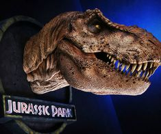 Pay homage to one of the deadliest predators to ever walk our planet by hanging up this Jurassic Park T-Rex bust in your home. This scale bust of the iconic female T-Rex measures in diameter and from the base to the nose. Jurassic Park T Rex, Dinosaur Pictures, Drawing Artist, Lion Sculpture, Statue, Drawings, Animals, Dinosaurs, Lava