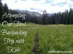 Find out what happened when we took our kids backpacking for the first time. Hiking with kids is always a bit of an adventure. Pin now to read later! Outdoor Life, Outdoor Camping, Camping First Aid Kit, Outdoor Outfitters, Hiking With Kids, Backpacking Gear, Family Adventure, Back To Nature, Amazing Destinations