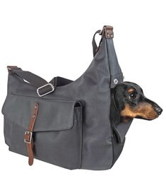 Micro Pooch Sling Carrier - modelled by Alfie BoO (Maltese boy). Dog Carrier Purse, Dog Purse, Dog Backpack, Dog Bag, Dog Sling Carrier, Dog Pouch, Designer Dog Carriers, Weenie Dogs, Dog Travel