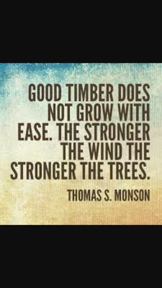 Stronger the wind, tougher the tree.