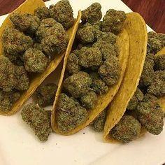 #indica #sativa #weed   #marijuana #joint  #green  #love weed  #cannabis #weedstagram  #loveweed #weedlovers #marijuanalovers #lovemarijuana #drug #weedgram  #420  #thc #highlife #snoopdogg #smokeweed #smoke  #weedporn  #money    #Regram via @weed_maryjz)  Nice! Real medicine , thats what we are all about as well #leafedin.org